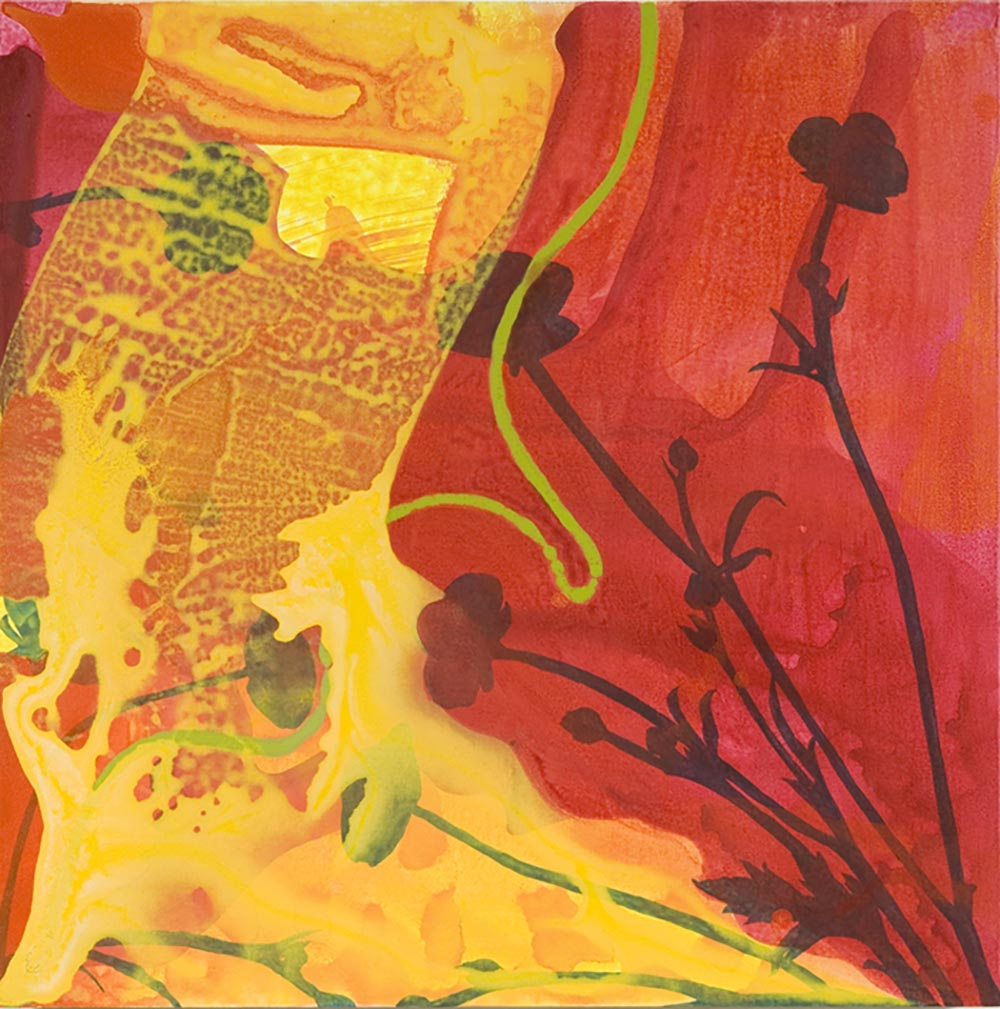 Andrea McCuaig Alchemy II 2007 Acrylic on canvas 75 x 75cm